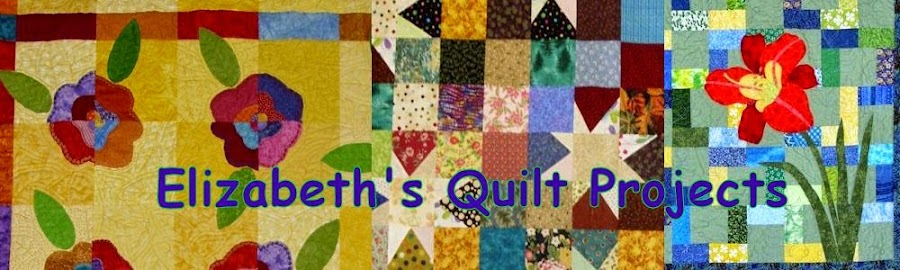 Elizabeth's Quilt Projects