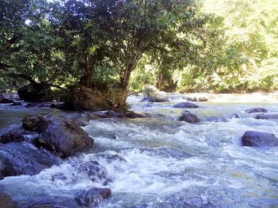 http://www.wisatakalimantan.com/2016/07/lok-laga-haruyan-kalimantan-selatan.html