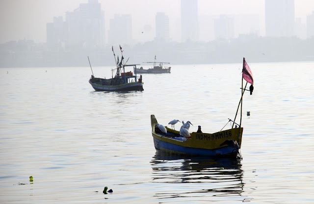 morning, foggy, smoggy, misty, worli, dadar skyline, mumbai, arabian sea, boats, birds, india,