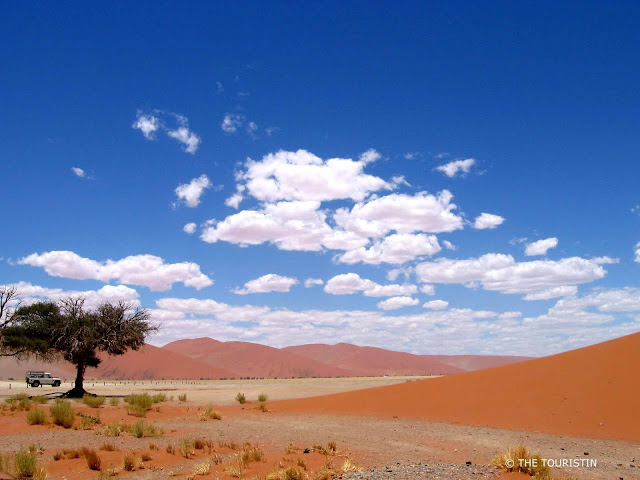 White and lonely Land Rover parks under a tree next to a large red dune in the Namib-Naukluft National Park in Namibia.