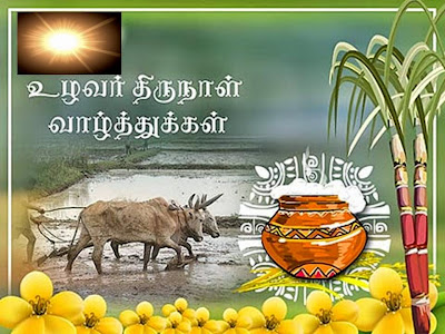 Image result for தமிழர் திருநாள் வாழ்த்துக்கள்