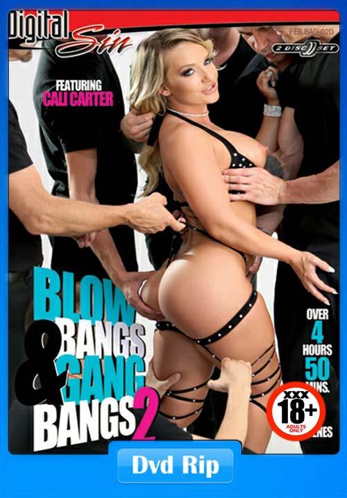 [18+] Blowbangs And Gangbangs 2 DiSC2 Adult DVDRip Movie x264