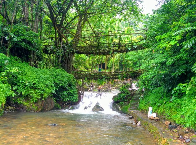 Trek to the living root bridges of Meghalaya, India