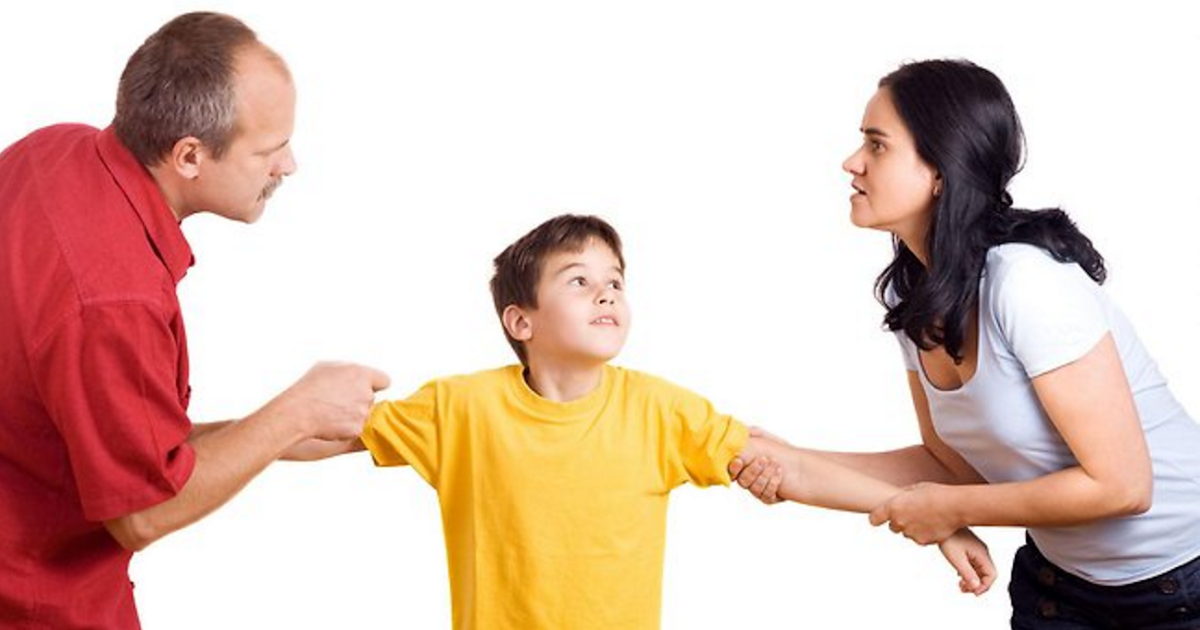 family custody battles Our animal companions are family so it's no wonder that when we split up with our spouses or move out of our family home disputes can arise about who gets to keep the animals this is a basic overview of what to expect if you are involved in a custody battle involving animals, along with helpful tips.
