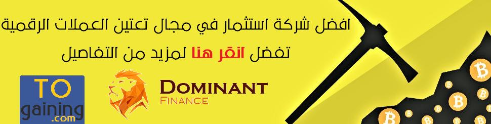 شرح Dominant Finance