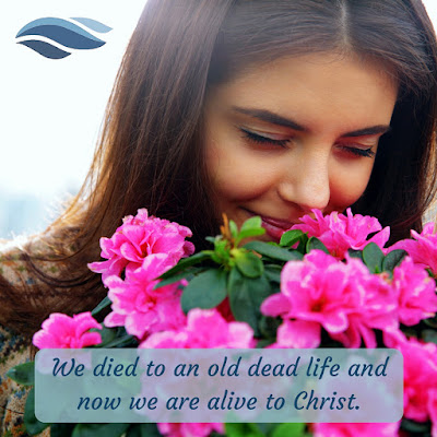 We died to an old dead life and now we are alive to Christ.