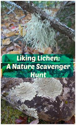 http://www.shareitscience.com/2016/12/lichen-nature-scavenger-hunt.html