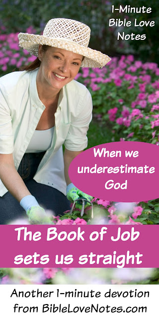 Book of Job, God's answer to Job, Trusting God