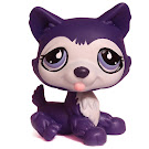 Littlest Pet Shop Large Playset Husky (#785) Pet