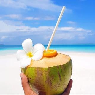Olej kokosowy właściości