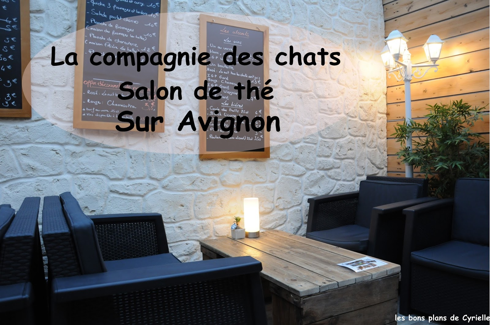 les bons plans de cyrielle la compagnie des chats sur avignon. Black Bedroom Furniture Sets. Home Design Ideas