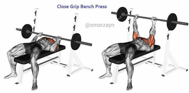 close grip bench press  triceps workout