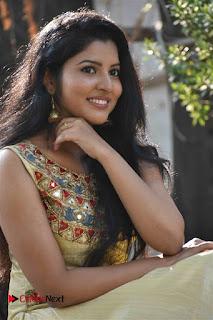 Actress Nayana Nair Stills in Long Dress at Arasakulam Tamil Movie Audio Launch  0009.jpg