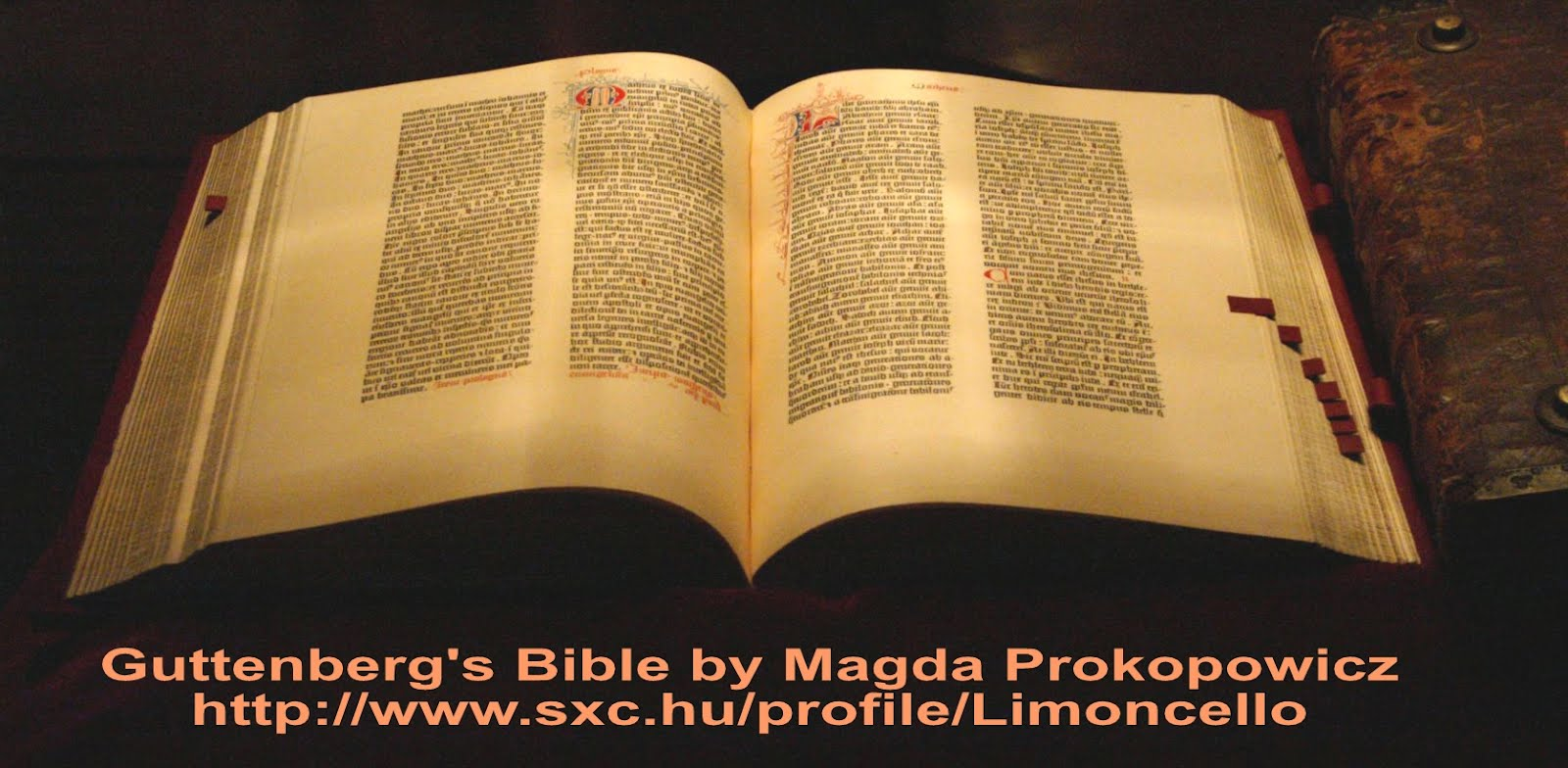 The Bible is the most published book in the world 77