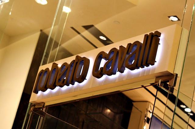 GYPSY GAUDI : ROBERTO CAVALLI SS2012