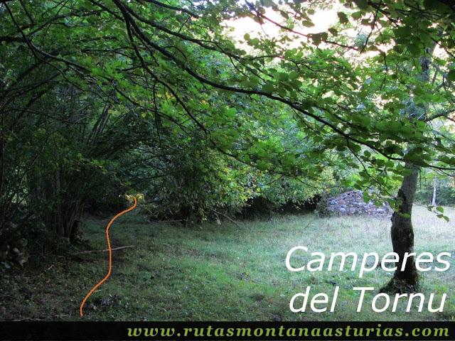 Ruta de los Arrudos y Corteguerón: Camperes del Tornu