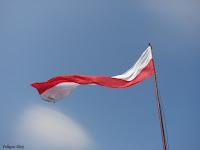 patriotyzm Polska biało-czerwona