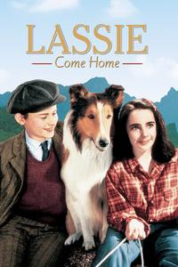 Watch Lassie Come Home Online Free in HD
