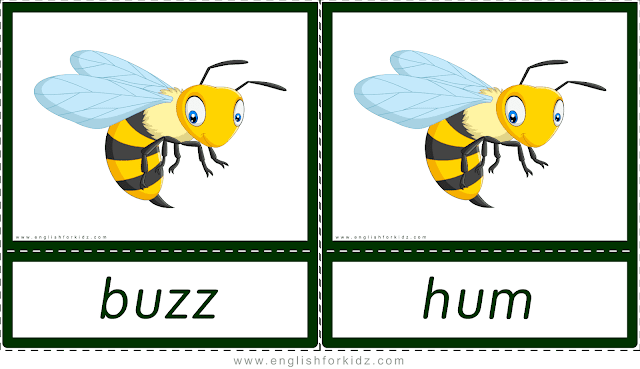Animal sounds flashcards - buzz, hum - bee -- printable ESL resources