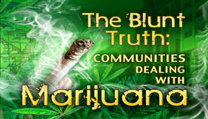 the blunt truth about marijuana The truth about marijuana be blunt may 28, 2013 guest blogs , medical marijuana historically speaking, famous pot smokers have been men: cheech and chong, the dude, snoop dogg, harold and kumarthe list goes on.