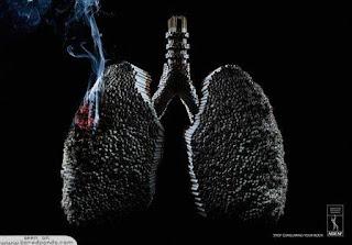 bahaya rokok bagi paru-paru