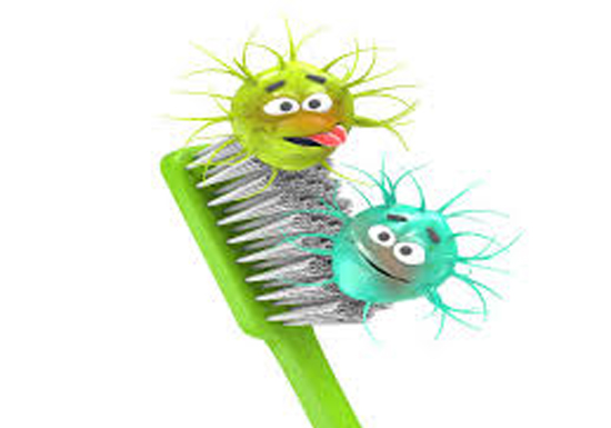 Contaminações escovas de dentes