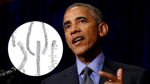"""Una muestra de """"estima"""": Obama es oficialmente un parásito"""