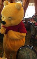 Pooh Disneyland Park Character