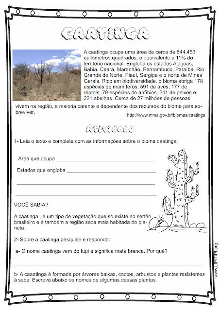 Atividade 5° Ano sobre o Bioma Caatinga