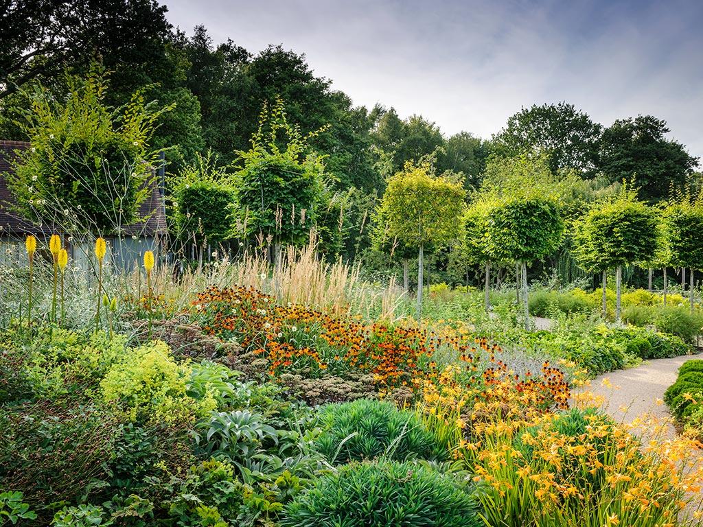 plantación en masa flores