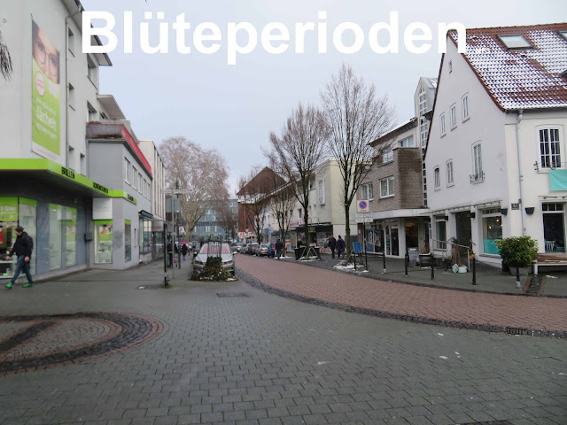https://hanfverband.de