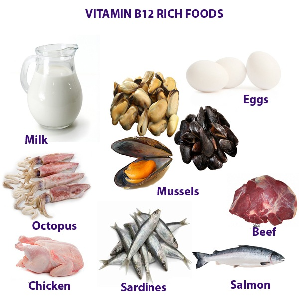 Foods With No Vitamin B