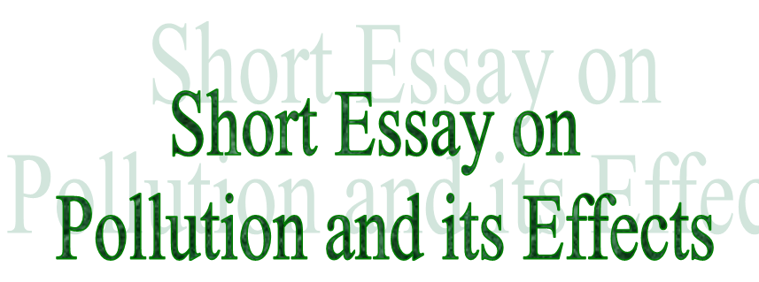 Essay on pollution and its effects on environment