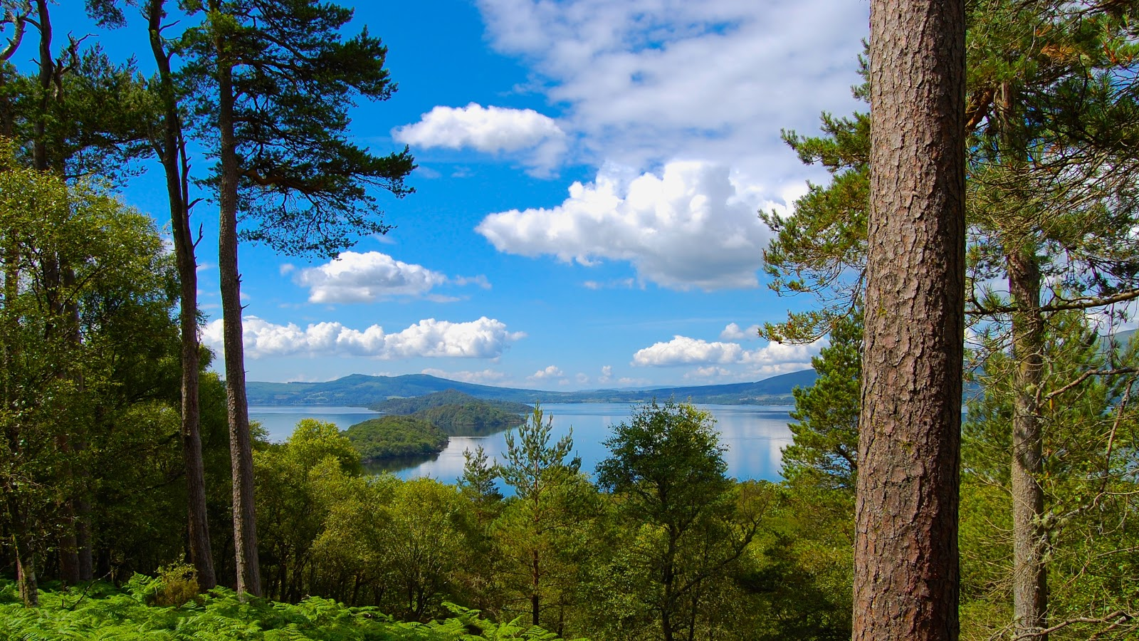 View of Loch Lomond from the island of Inchcailloch