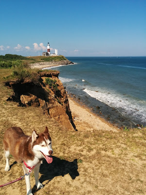 Montauk point, Long Island NY.  You can see the historic Montauk Point Lighthouse in the distance