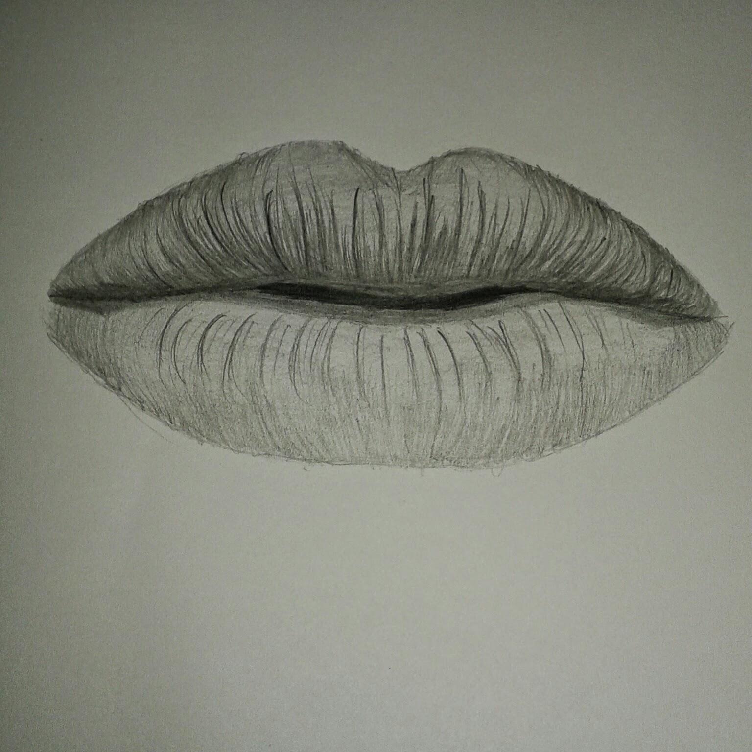 Kumpulan Cara Menggambar Sketsa Hidung Dan Bibir