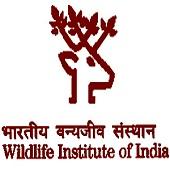 WII Dehradun Recruitment