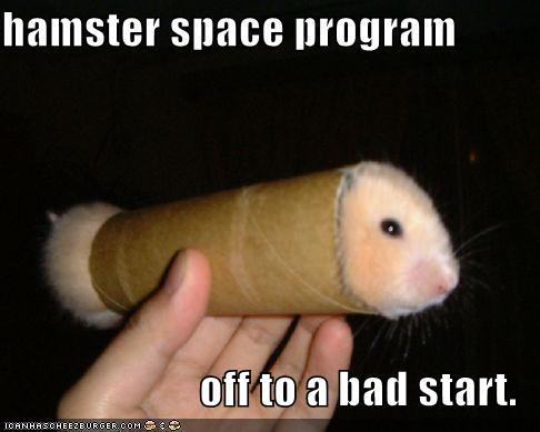 Hamsters Porn 27