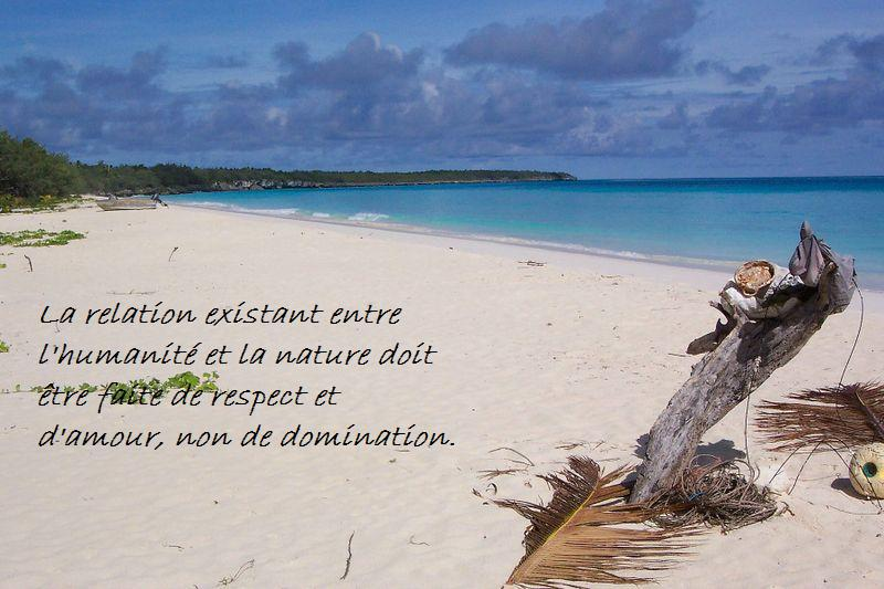 Citations Option Bonheur Citation Sur La Nature