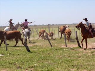 argentiina, ratsastusmatka