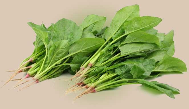 Manfaat Dari Sayur Bayam Untuk Kesehatan Yang Menakjubkan
