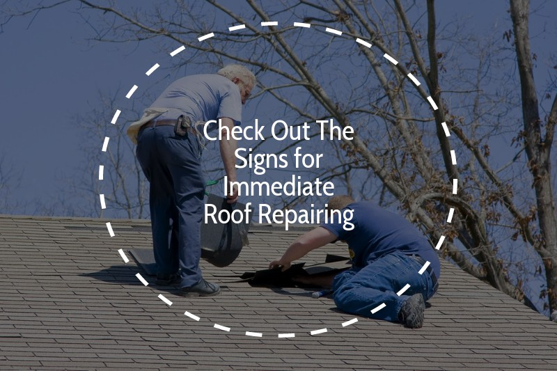 What to Consider Before You Hire Professional for Roof Repairs?