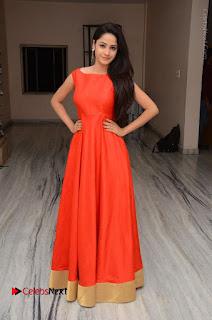 Telugu Actress Divya Nandini Stills in Orange Sleeveless Gown at Chennai Chaitrama Movie le Launch Event  0126.JPG