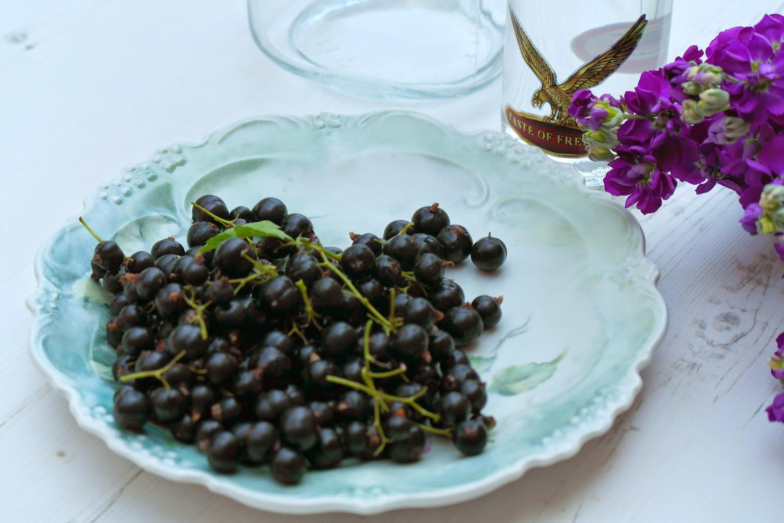 homegrown blackcurrants