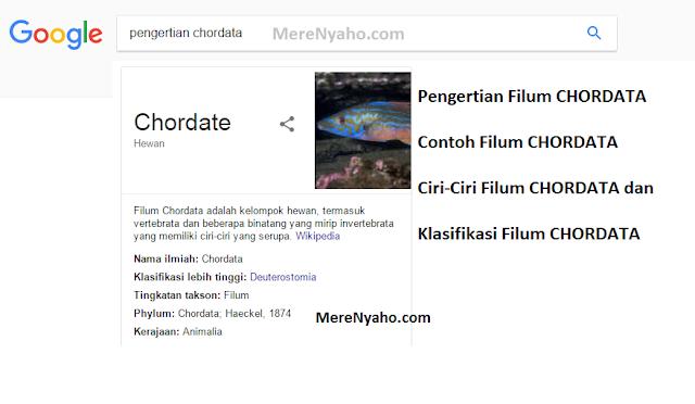 Pengertian Filum CHORDATA, Contoh Filum CHORDATA, Ciri-Ciri Filum CHORDATA dan Klasifikasi Filum CHORDATA,