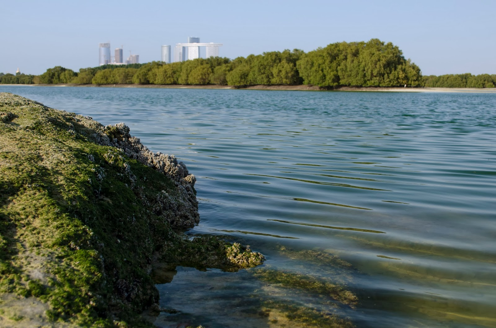 Rock, water and skyline of Abu Dhabi Mangroves - Photo by Adham Al Oka