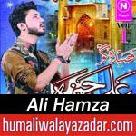 http://www.humaliwalayazadar.com/2016/06/ali-hamza-qasida-2016.html