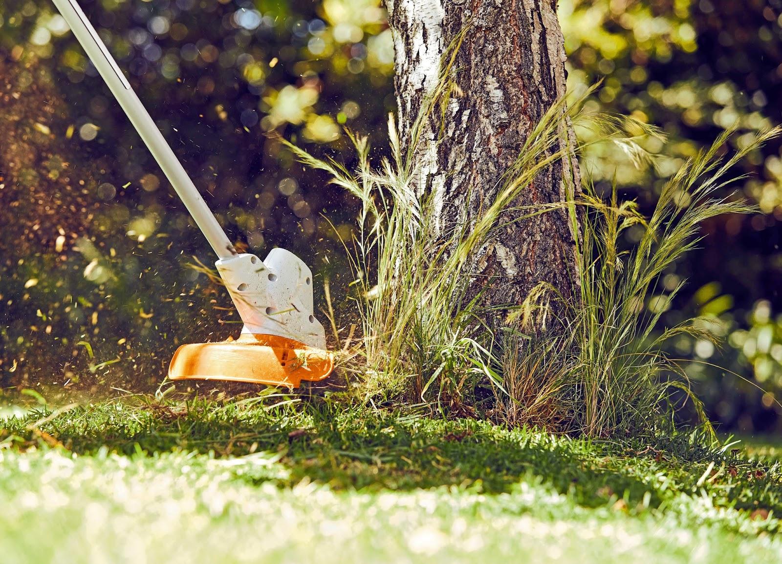 Fruhjahrsputz Garten Tipps Gartensaison ? Blessfest.info Fruhjahrsputz Garten Tipps Gartensaison