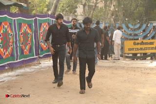 Tamil Film Industry Jallikattu Support Protest of Jallikattu  0075.jpg