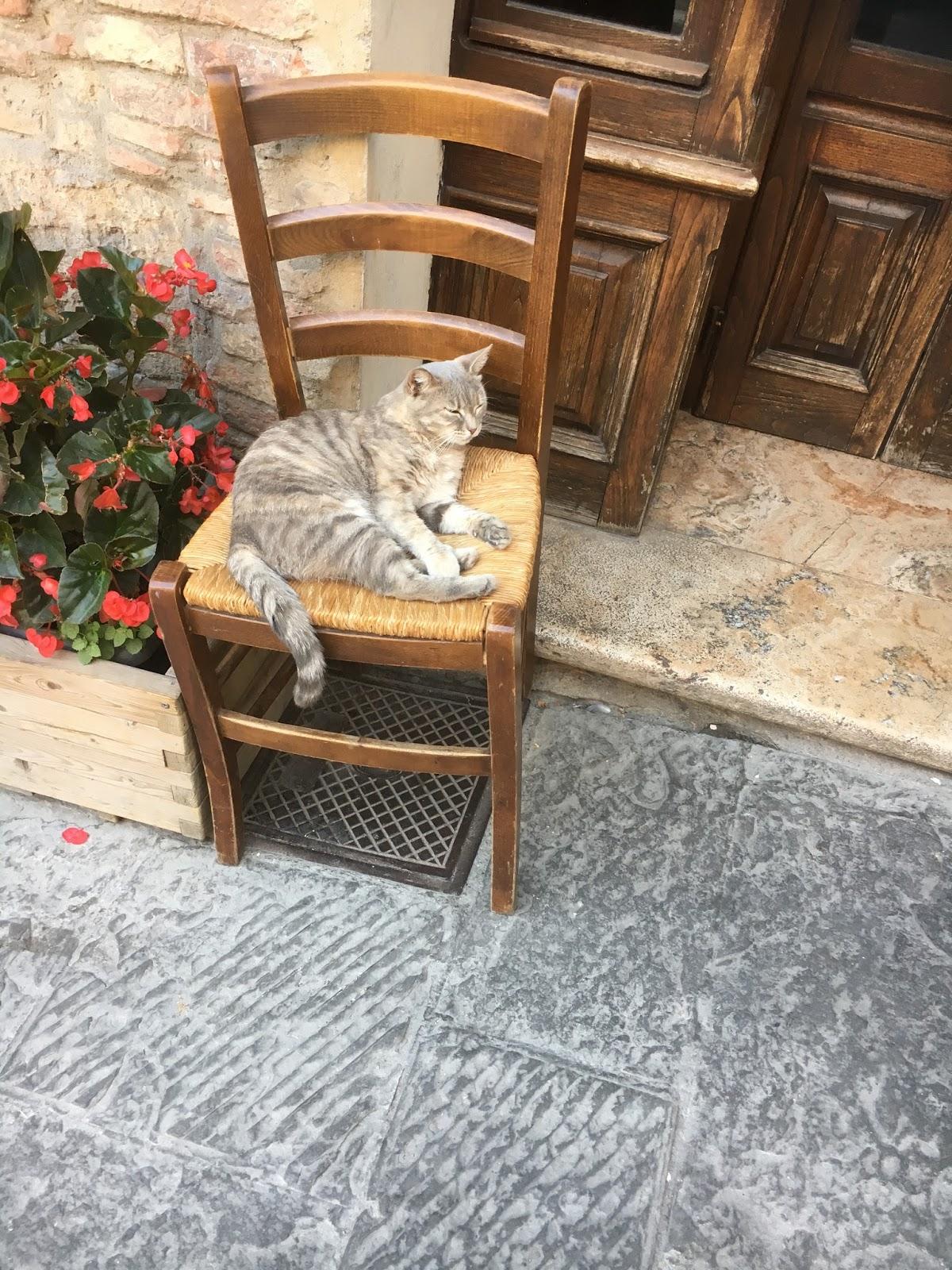 Du 39 chiacchiere a montepulciano la sedia impagliata for Sedia impagliata